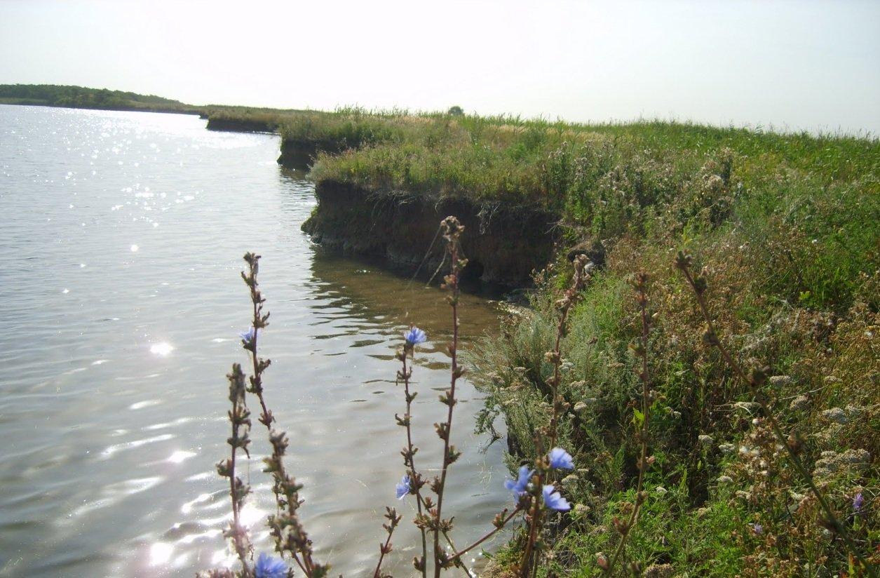 рыболовная база веселовского водохранилища в степном кургане