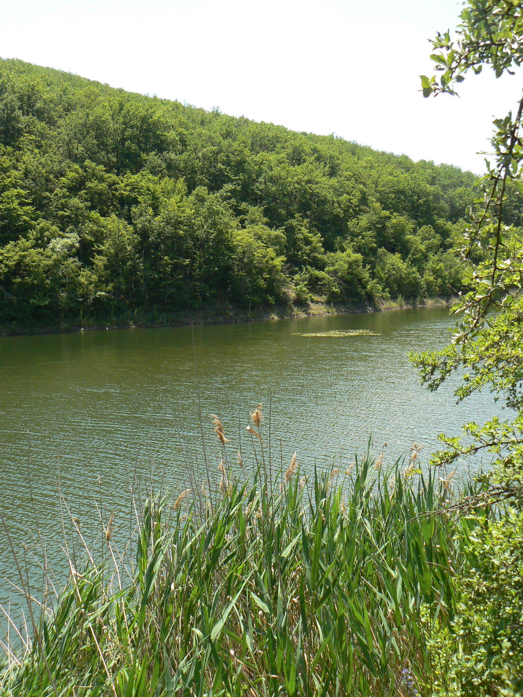 северное озеро рыбалка