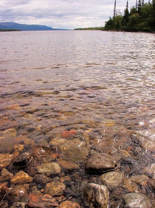 озеро аракуль отзывы о рыбалке