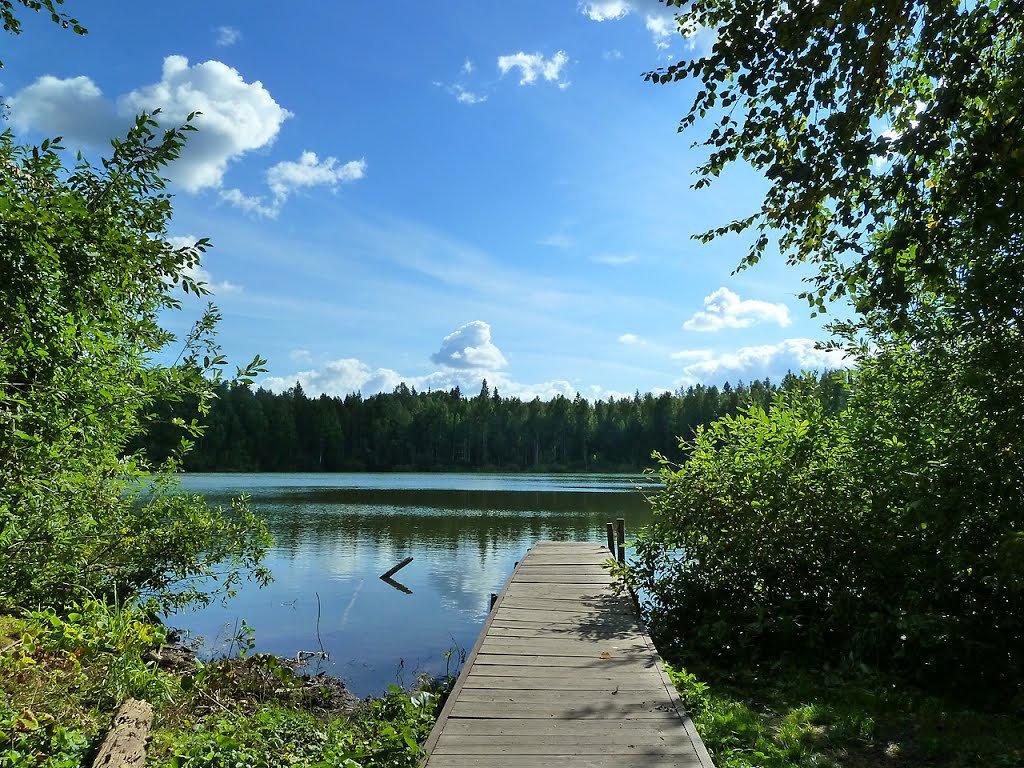 озеро воже вологодская область рыбалка