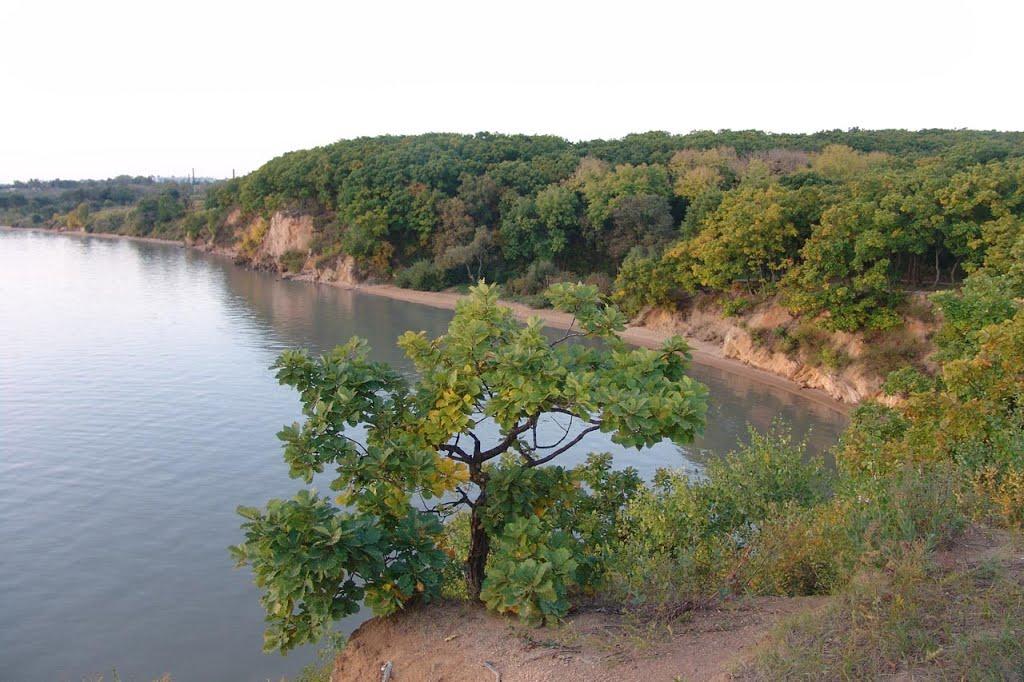 приморский край озеро ханка рыбалка