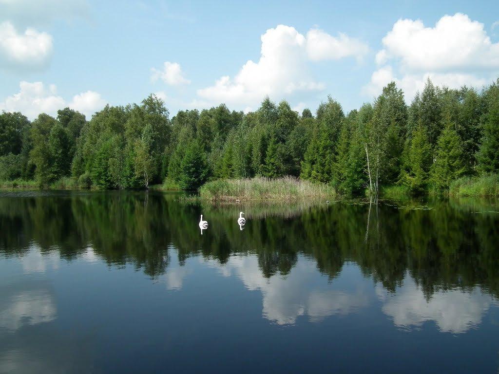"""Национальный парк """"Орловское полесье"""""""