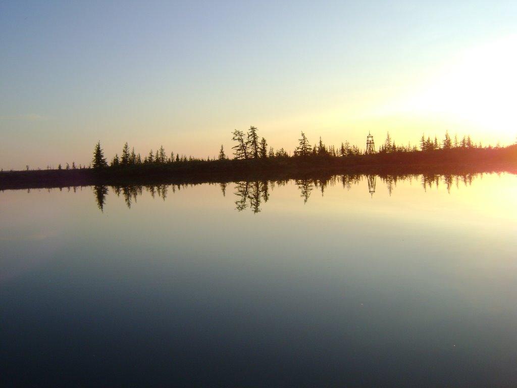 рыбалка на таймыре на реке пясино