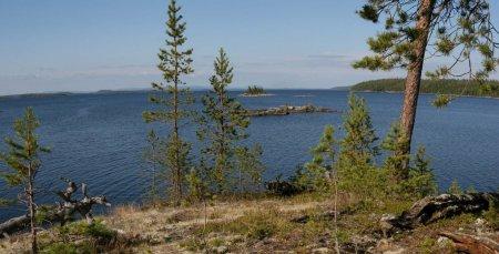 Озеро Ковдозеро. Мурманская область.