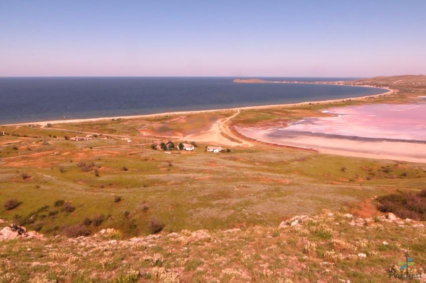 Соленые озера Крыма