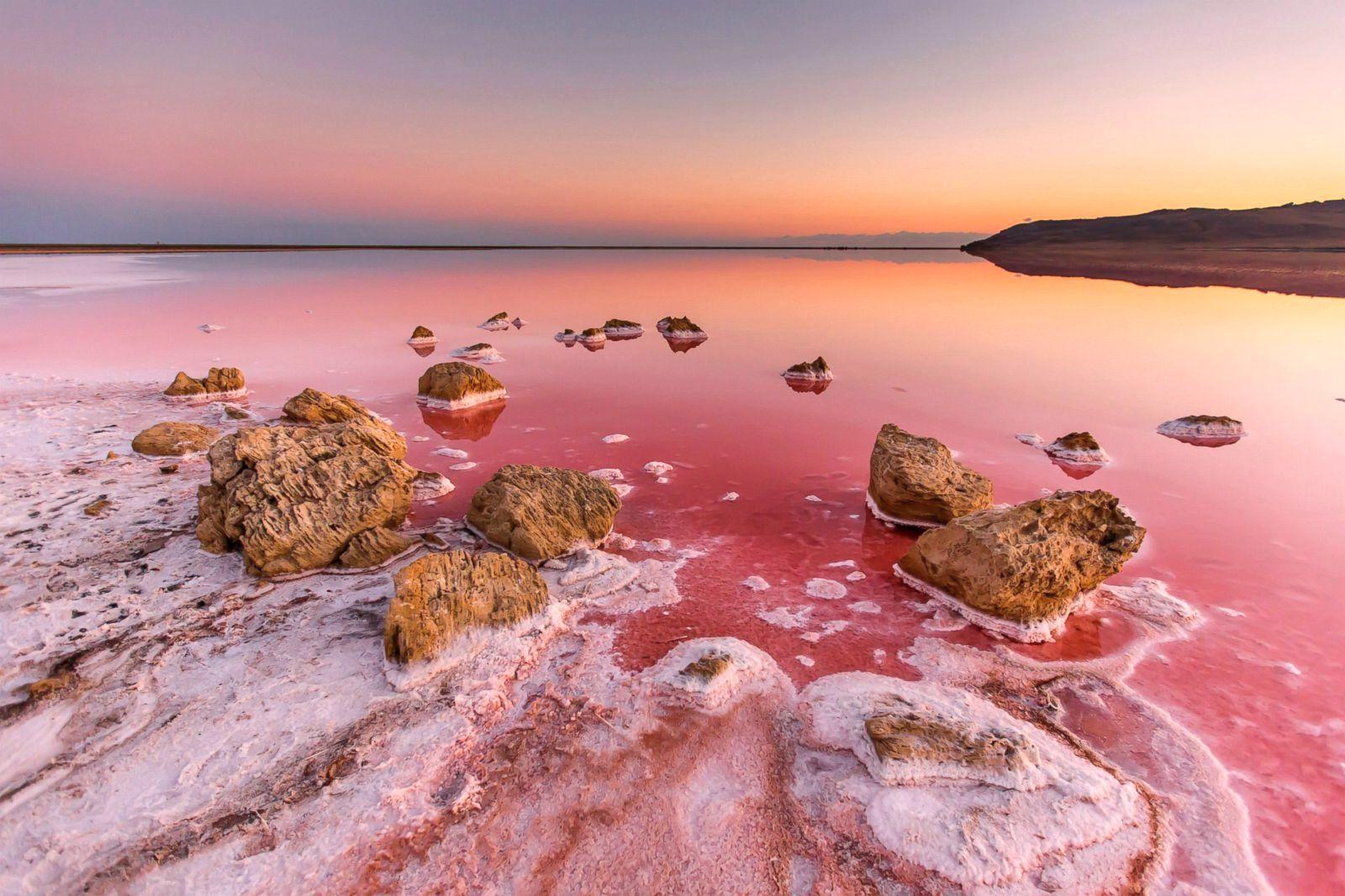 Лечение суставов в соленых озерах строение сустава суставы грудной конечности животных