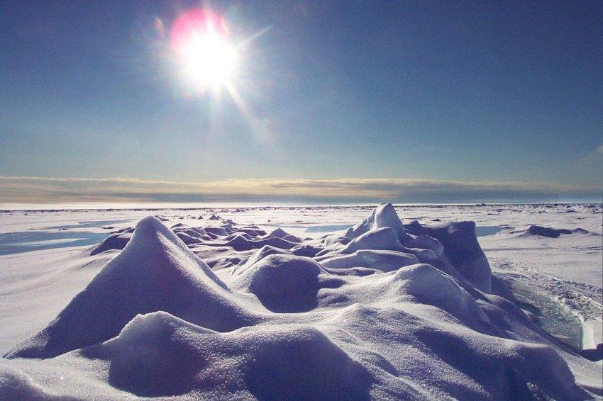 Арктический пояс России