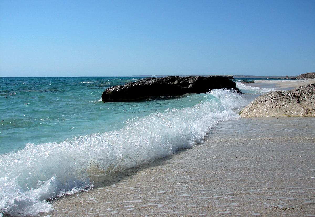 Фотообои море пляж морская звезда современный