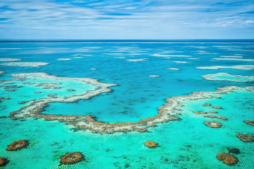 Природные объекты всемирного наследия. Большой барьерный риф