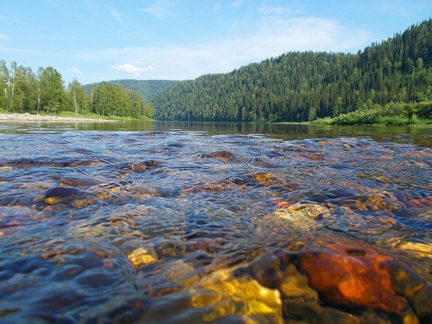 река Томь