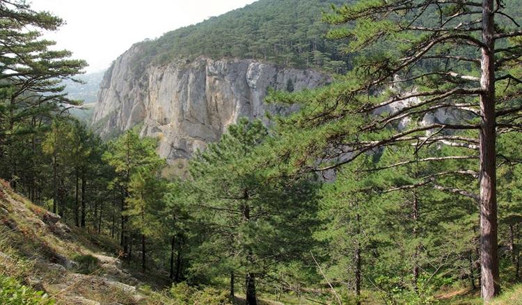 Заповедные места в Крыму. Описание, фото заповедников и красивых мест в Крыму